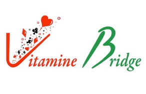 Icone Vitamine Bridge